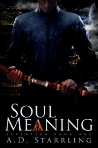Soul Meaning-400-height